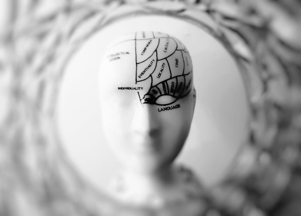 Gehirn aufteilung