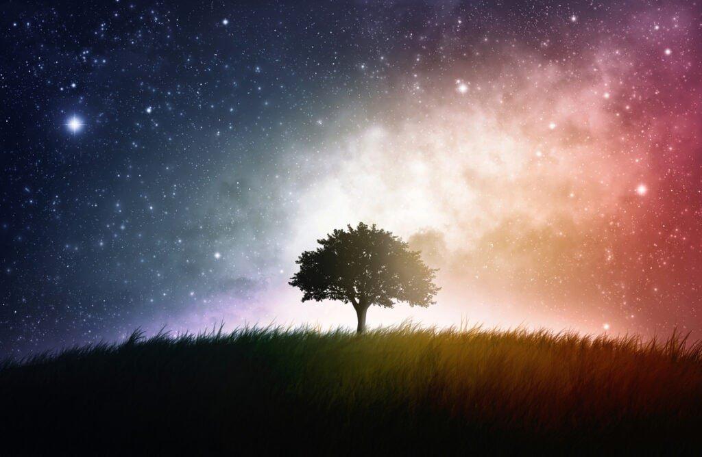 Träumen Baum