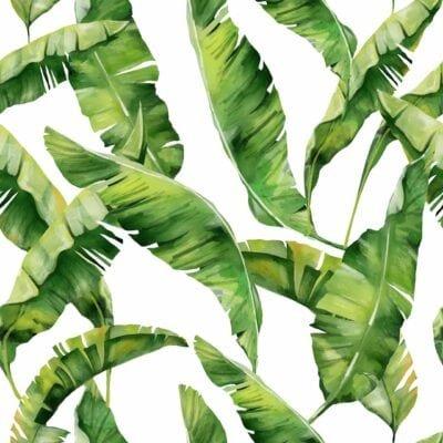 Bild von Palmblättern