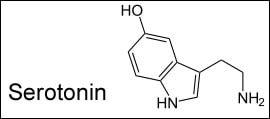 serotonin astralreisen fehler
